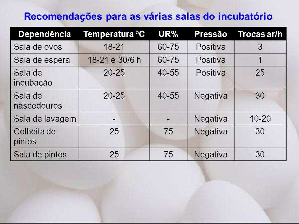 Recomendações para as várias salas do incubatório