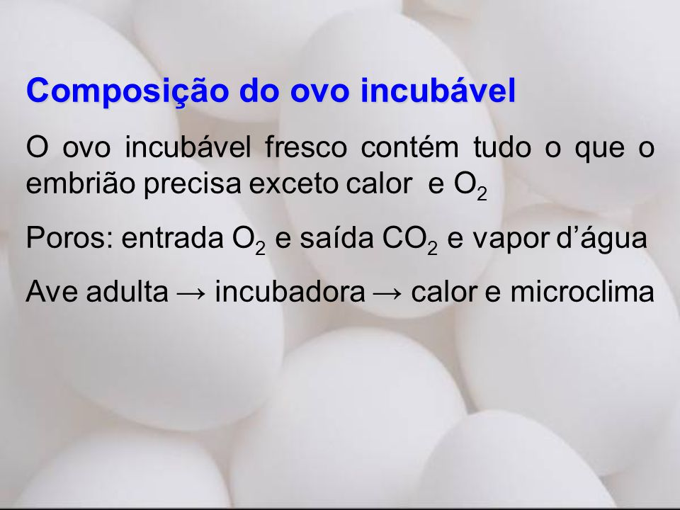 Composição do ovo incubável