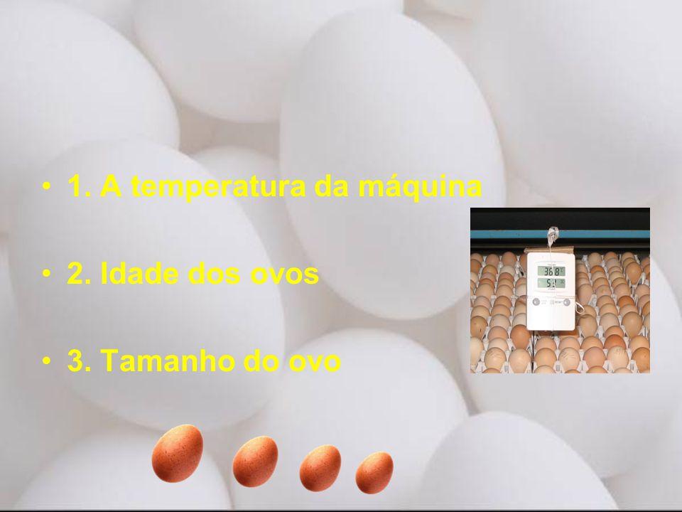 1. A temperatura da máquina 2. Idade dos ovos 3. Tamanho do ovo