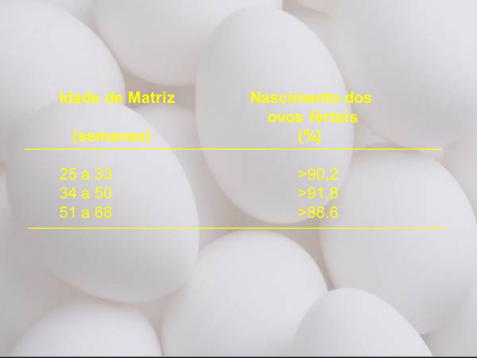 Idade de Matriz Nascimento dos ovos férteis (semanas) (%)