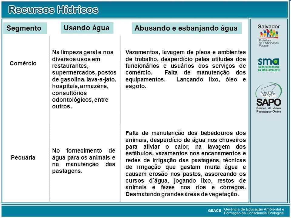 Consumo Doméstico / Público (cont.)