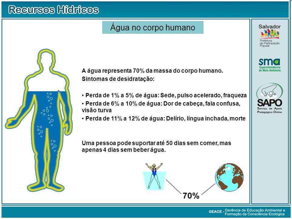 Água no Corpo Humano Água no corpo humano