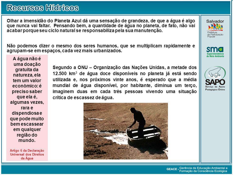 Artigo 6 da Declaração Universal dos Direitos da Água