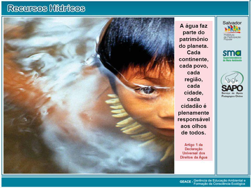 Artigo 1 da Declaração Universal dos Direitos da Água