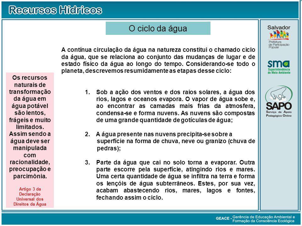 Artigo 3 da Declaração Universal dos Direitos da Água
