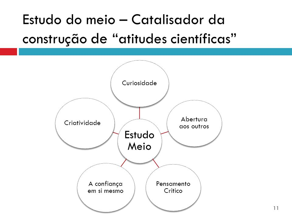 Estudo do meio – Catalisador da construção de atitudes científicas