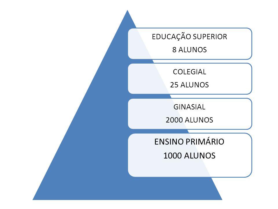 ENSINO PRIMÁRIO 1000 ALUNOS EDUCAÇÃO SUPERIOR 8 ALUNOS COLEGIAL