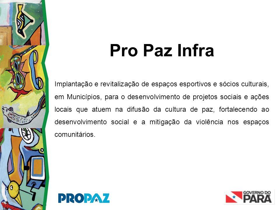 Pro Paz Infra