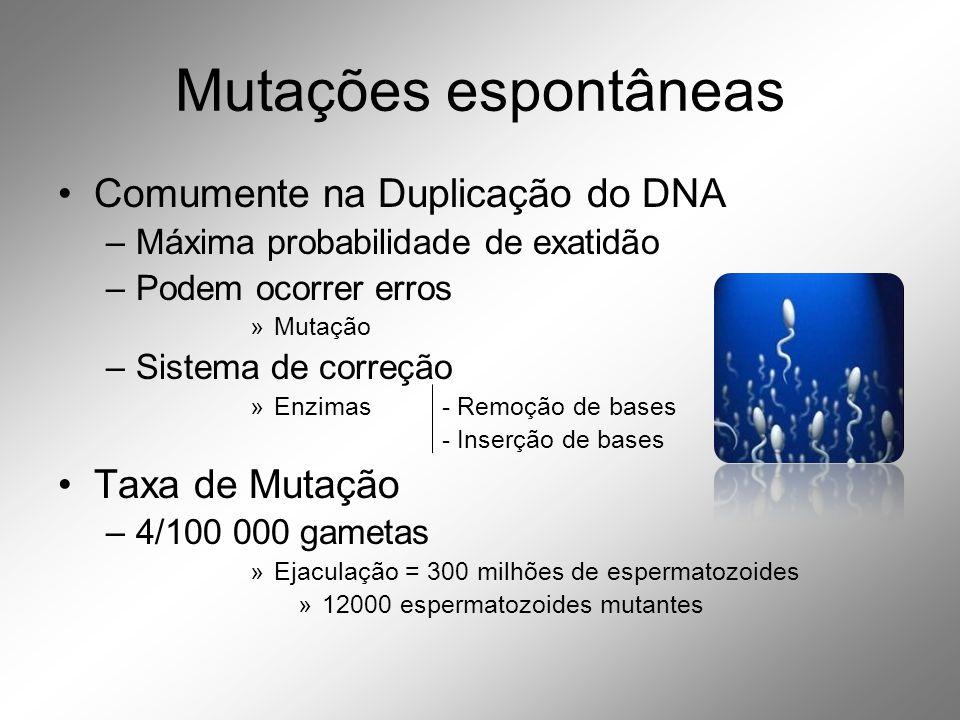 Mutações espontâneas Comumente na Duplicação do DNA Taxa de Mutação