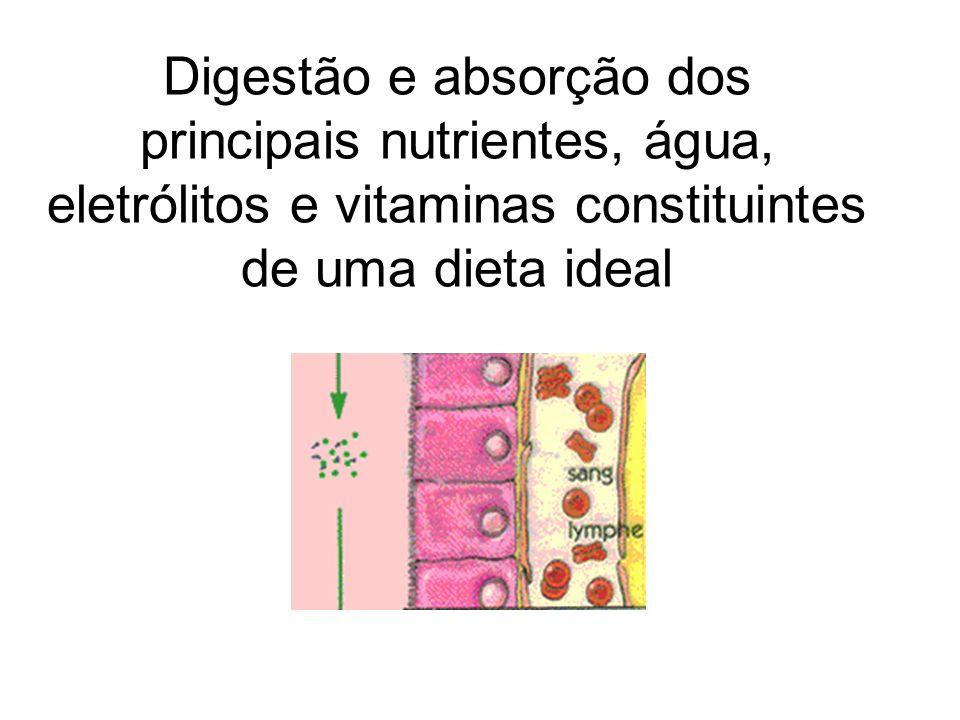 Digestão e absorção dos principais nutrientes, água, eletrólitos e vitaminas constituintes de uma dieta ideal