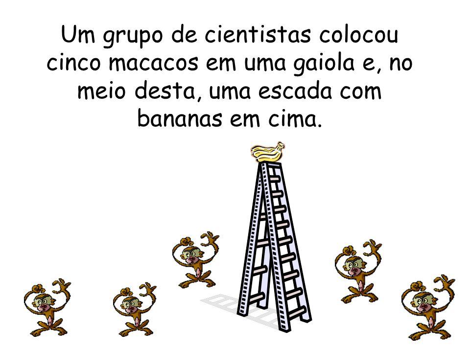 Um grupo de cientistas colocou cinco macacos em uma gaiola e, no meio desta, uma escada com bananas em cima.