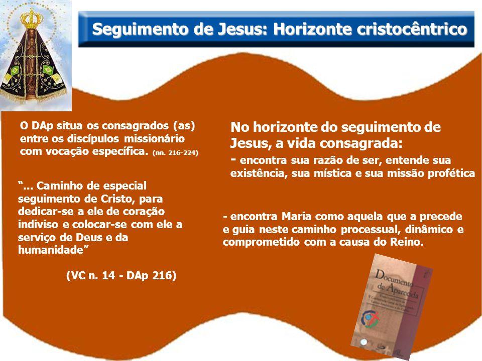 Seguimento de Jesus: Horizonte cristocêntrico