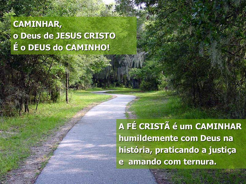 CAMINHAR, o Deus de JESUS CRISTO. É o DEUS do CAMINHO! A FÉ CRISTÃ é um CAMINHAR.