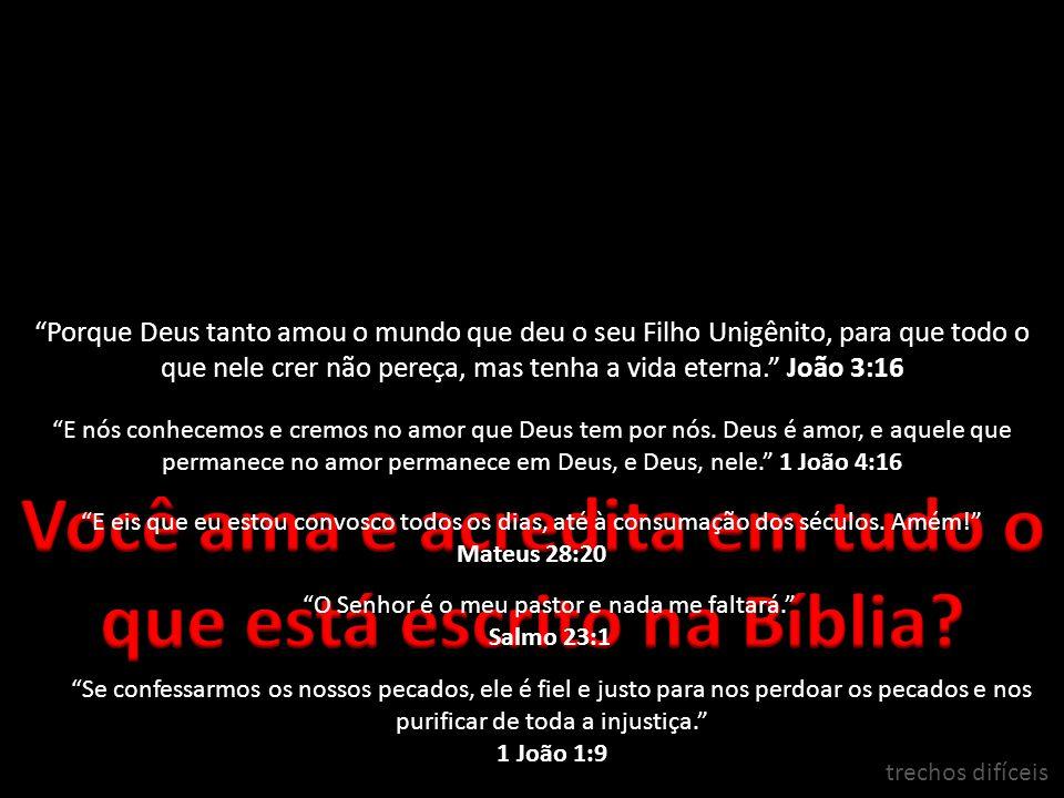Você ama e acredita em tudo o que está escrito na Bíblia