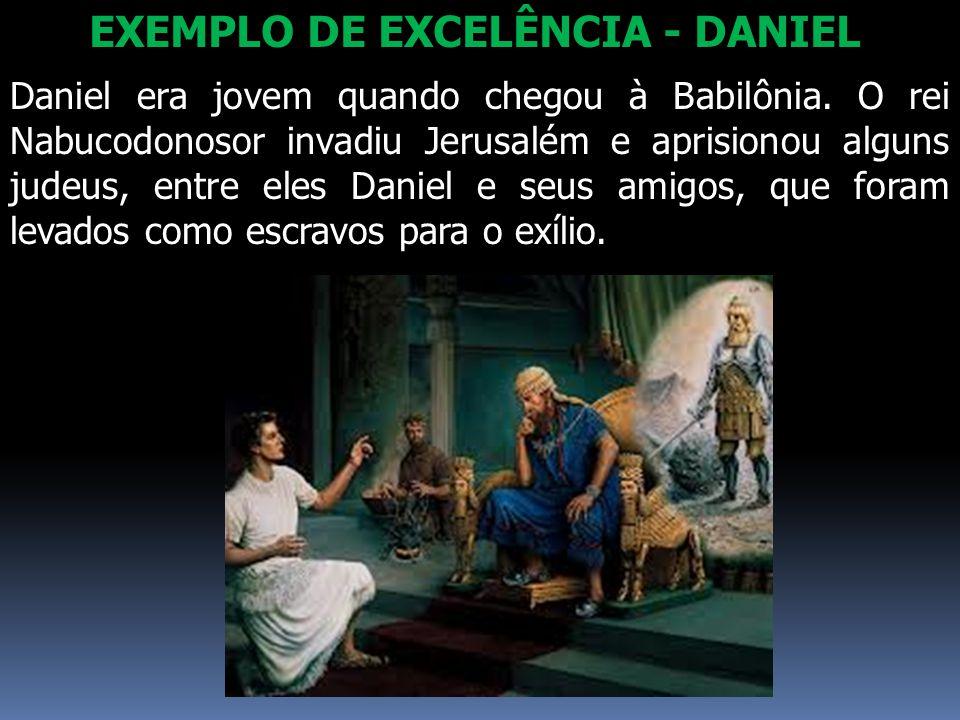 EXEMPLO DE EXCELÊNCIA - DANIEL