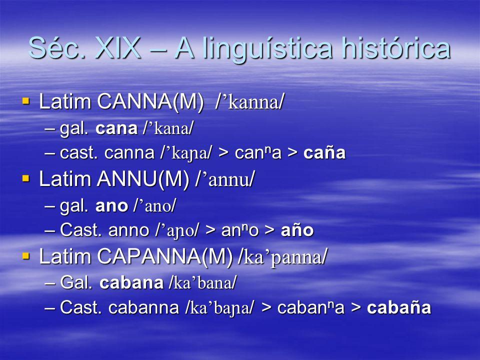 Séc. XIX – A linguística histórica