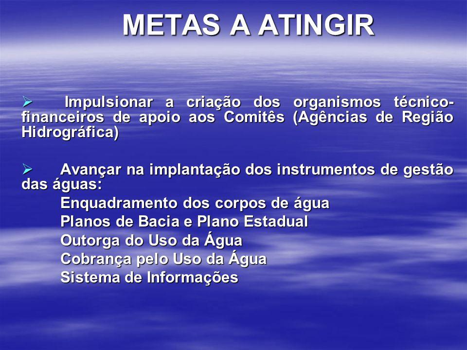 METAS A ATINGIR Impulsionar a criação dos organismos técnico-financeiros de apoio aos Comitês (Agências de Região Hidrográfica)