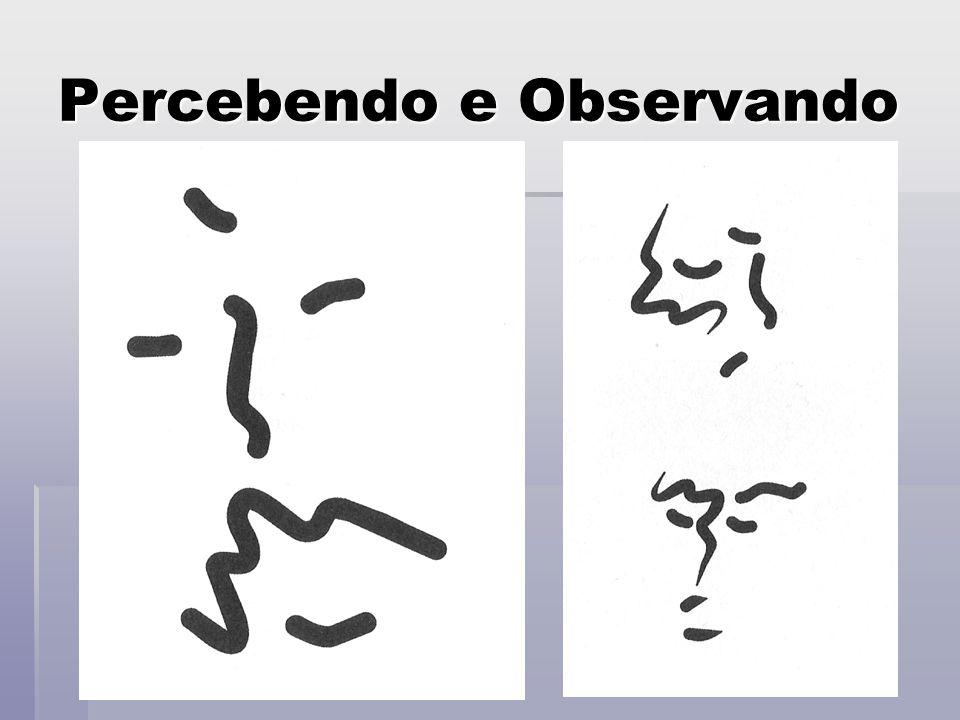 Percebendo e Observando