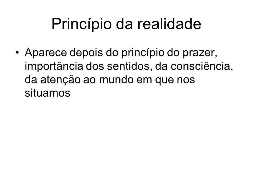Princípio da realidade