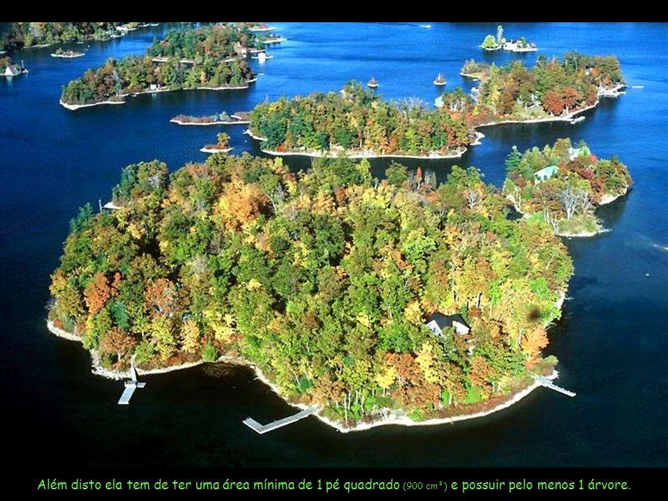 Além disto ela tem de ter uma área mínima de 1 pé quadrado (900 cm²) e possuir pelo menos 1 árvore.