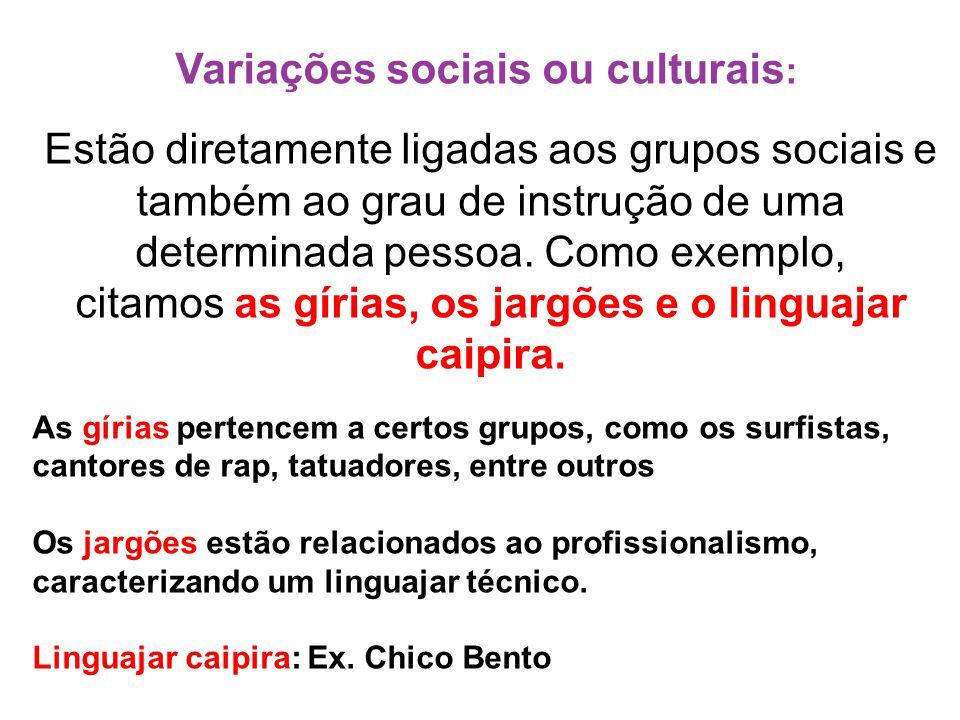 Variações sociais ou culturais: Estão diretamente ligadas aos grupos sociais e também ao grau de instrução de uma determinada pessoa. Como exemplo, citamos as gírias, os jargões e o linguajar caipira.