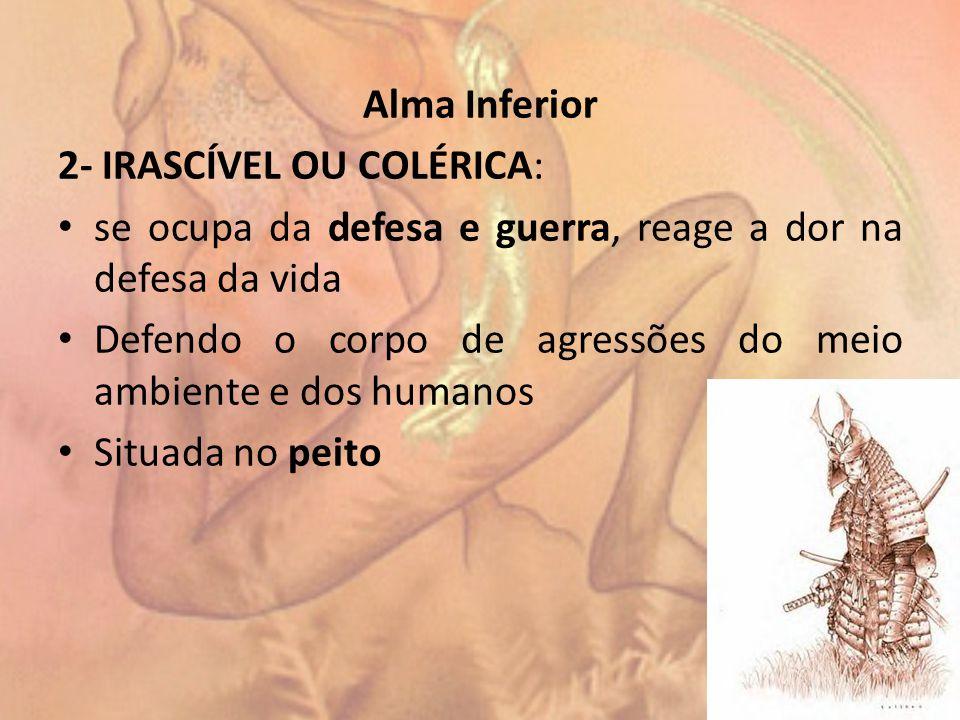 Alma Inferior 2- IRASCÍVEL OU COLÉRICA: se ocupa da defesa e guerra, reage a dor na defesa da vida.
