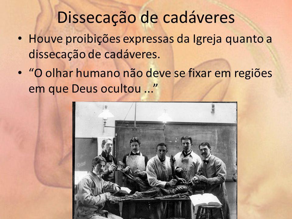 Dissecação de cadáveres