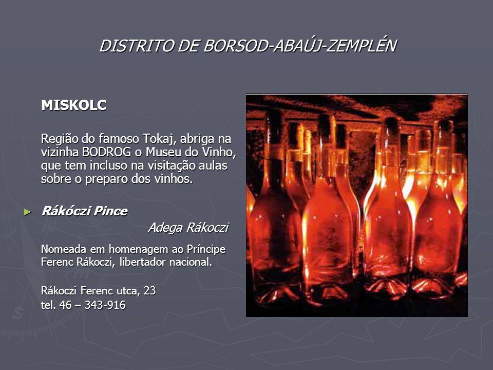DISTRITO DE BORSOD-ABAÚJ-ZEMPLÉN