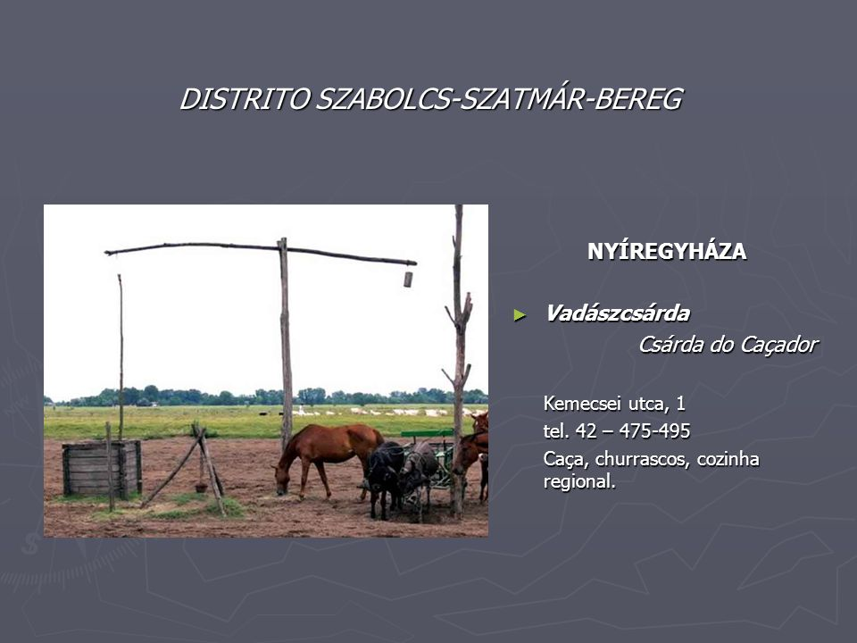 DISTRITO SZABOLCS-SZATMÁR-BEREG