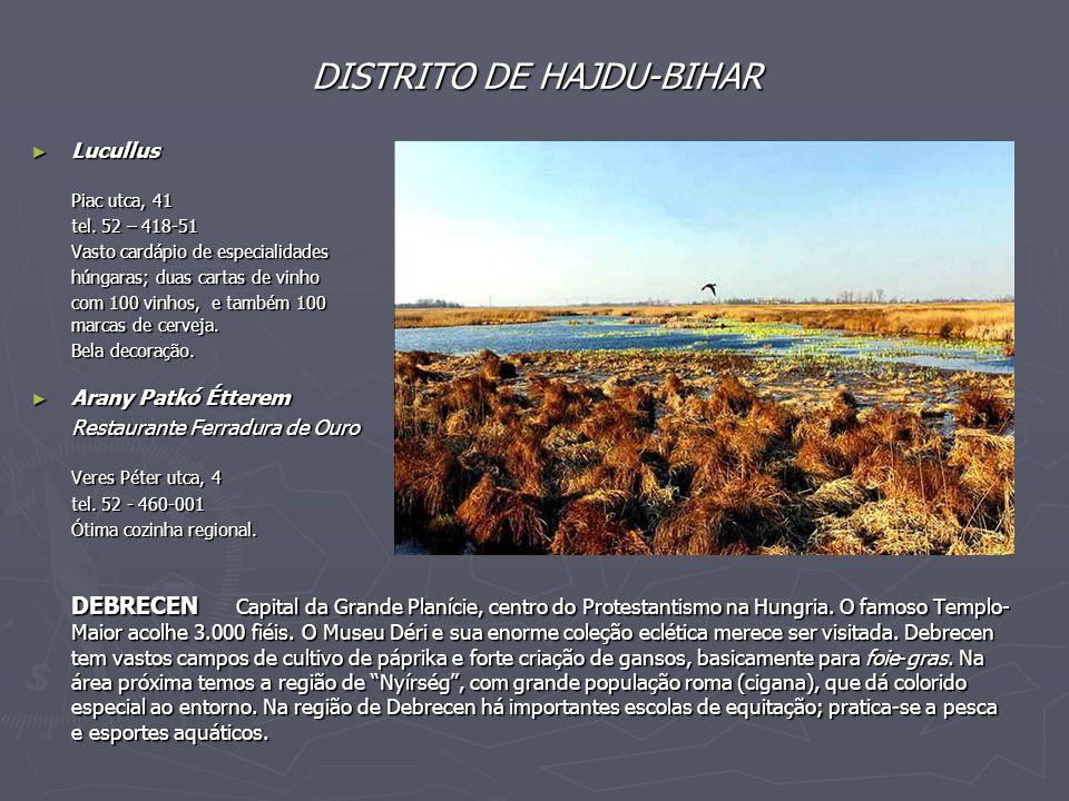 DISTRITO DE HAJDU-BIHAR