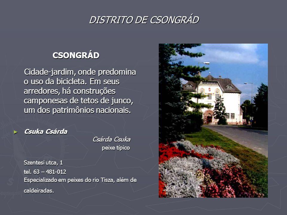 Szentesi utca, 1 DISTRITO DE CSONGRÁD CSONGRÁD