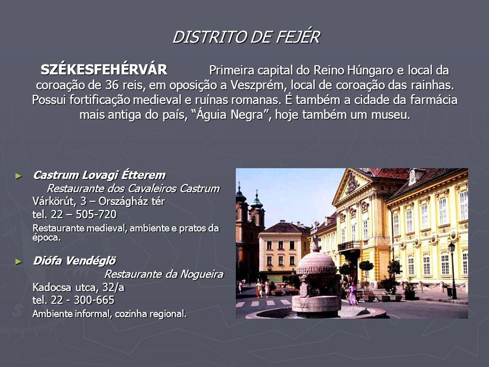 DISTRITO DE FEJÉR SZÉKESFEHÉRVÁR Primeira capital do Reino Húngaro e local da coroação de 36 reis, em oposição a Veszprém, local de coroação das rainhas. Possui fortificação medieval e ruínas romanas. É também a cidade da farmácia mais antiga do país, Águia Negra , hoje também um museu.