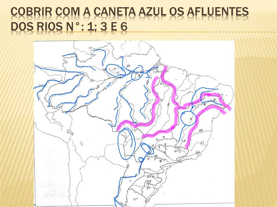 Cobrir com a caneta azul os afluentes dos rios n°: 1; 3 e 6