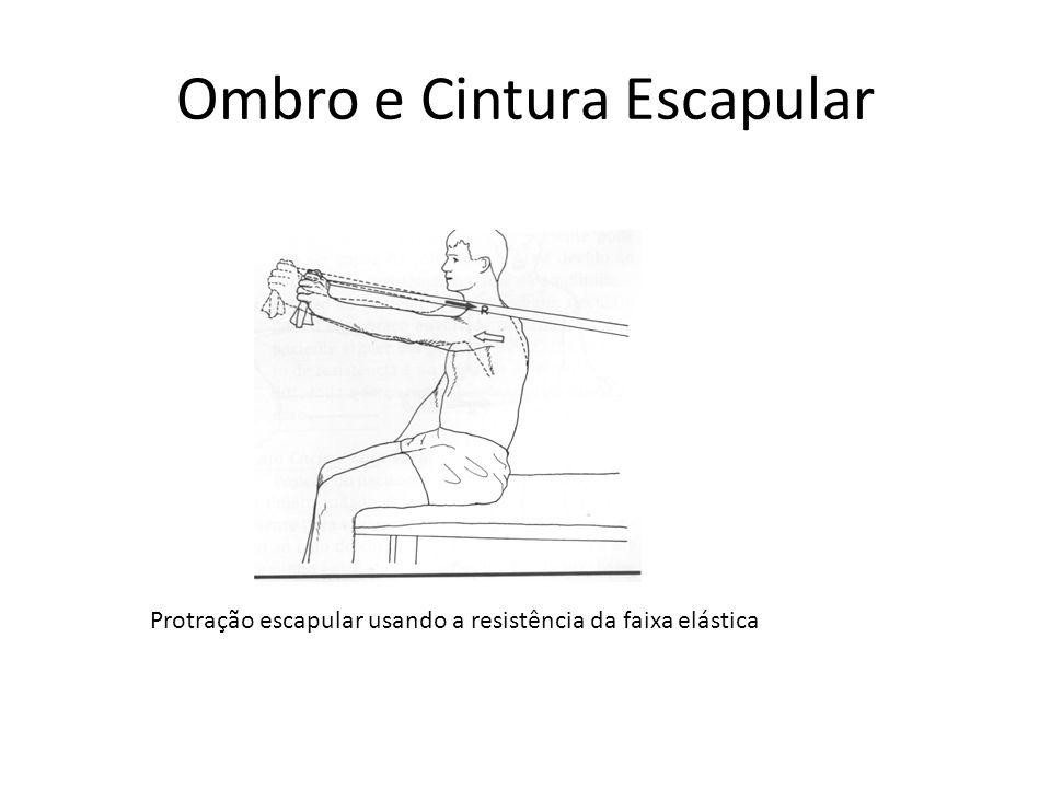 Ombro e Cintura Escapular