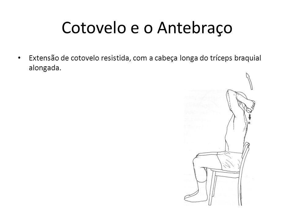 Cotovelo e o Antebraço Extensão de cotovelo resistida, com a cabeça longa do tríceps braquial alongada.
