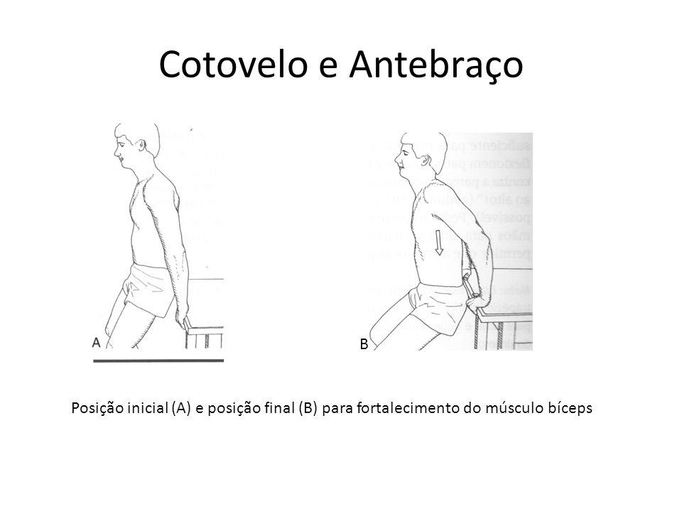 Cotovelo e Antebraço B.