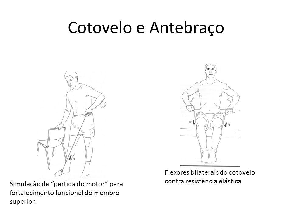 Cotovelo e Antebraço Flexores bilaterais do cotovelo contra resistência elástica.