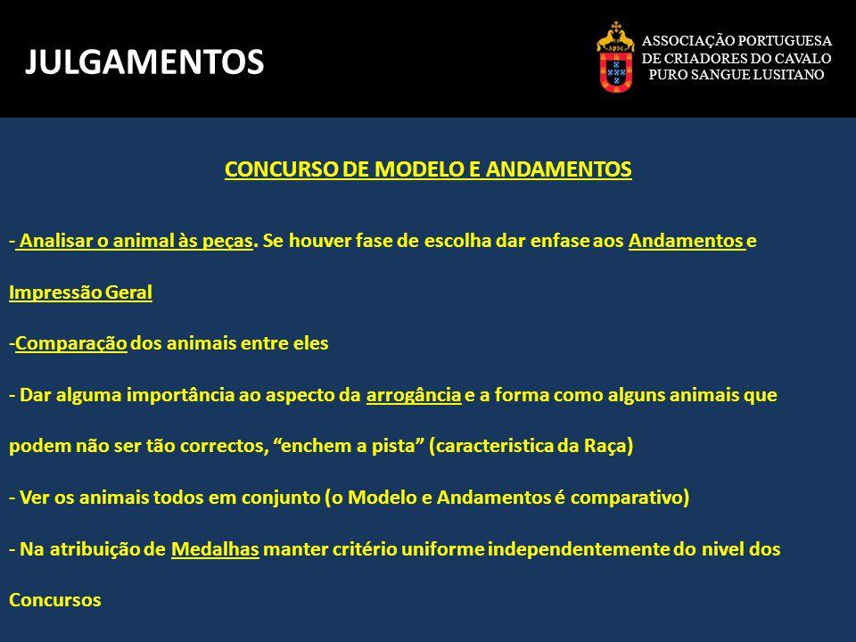 CONCURSO DE MODELO E ANDAMENTOS