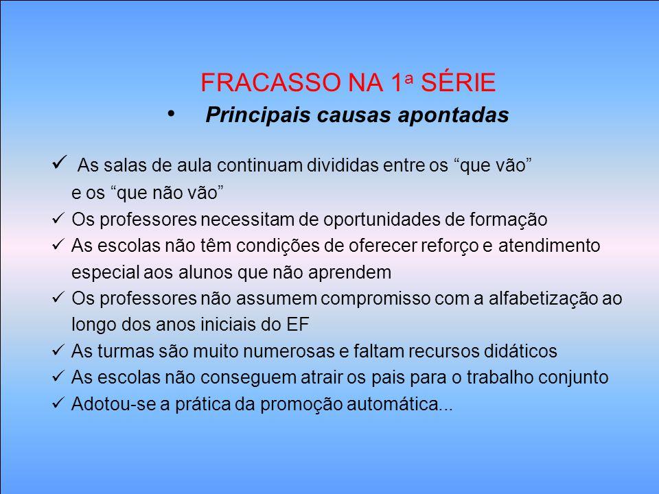 Principais causas apontadas