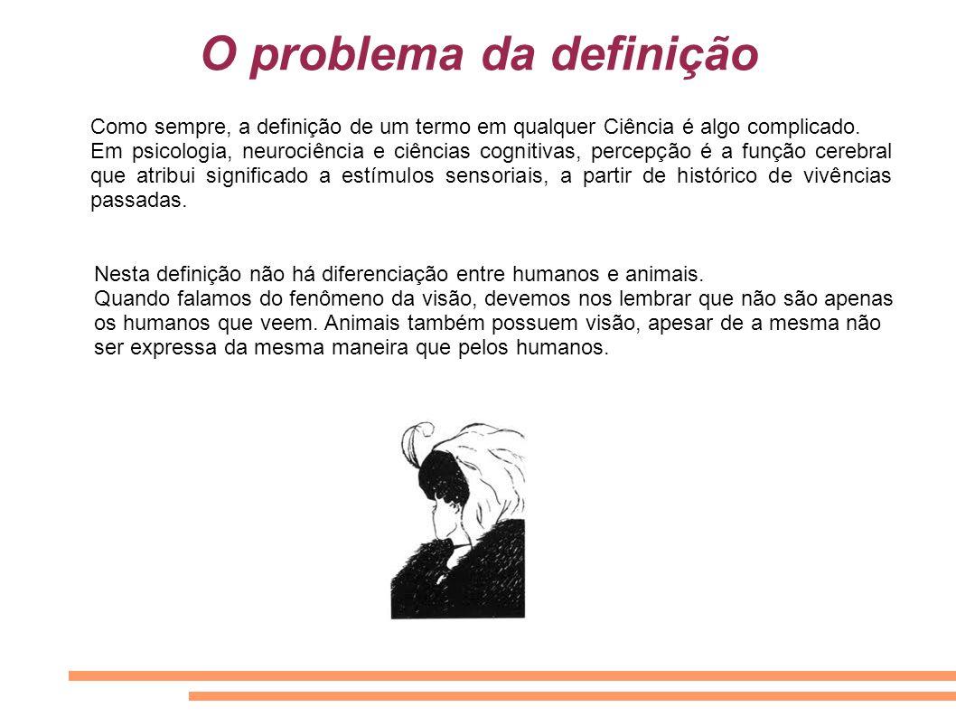 O problema da definição
