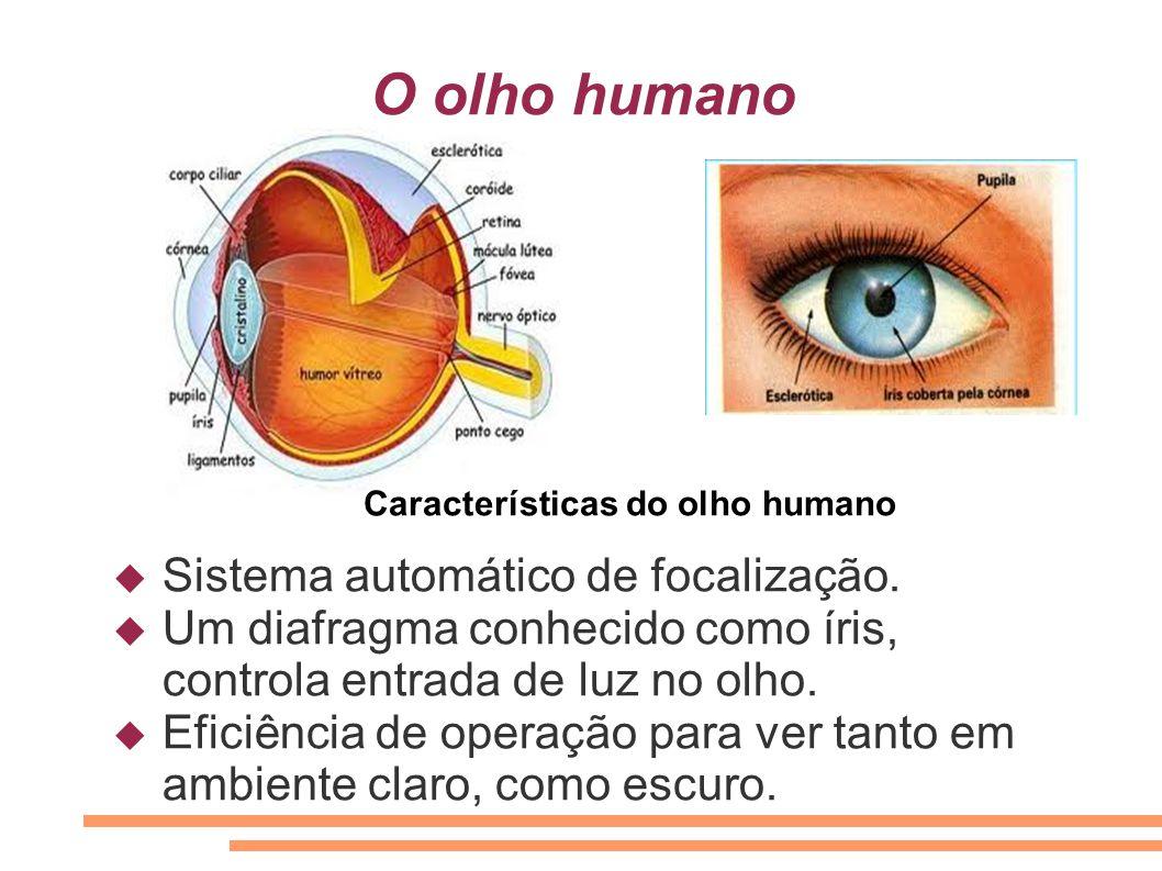 O olho humano Sistema automático de focalização.