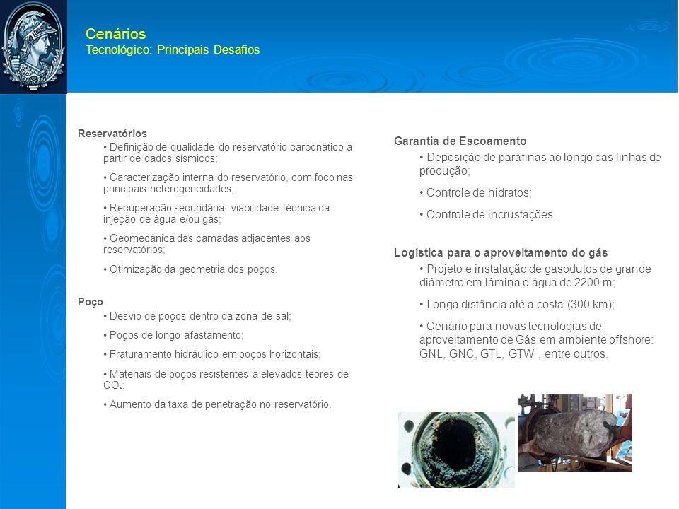Cenários Tecnológico: Principais Desafios Garantia de Escoamento