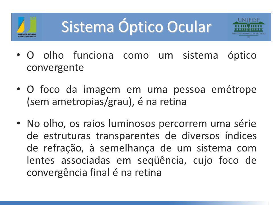 Sistema Óptico Ocular O olho funciona como um sistema óptico convergente.