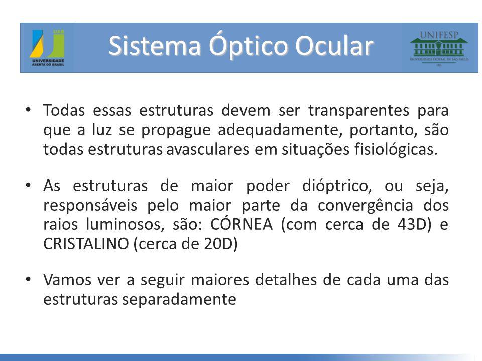 Sistema Óptico Ocular