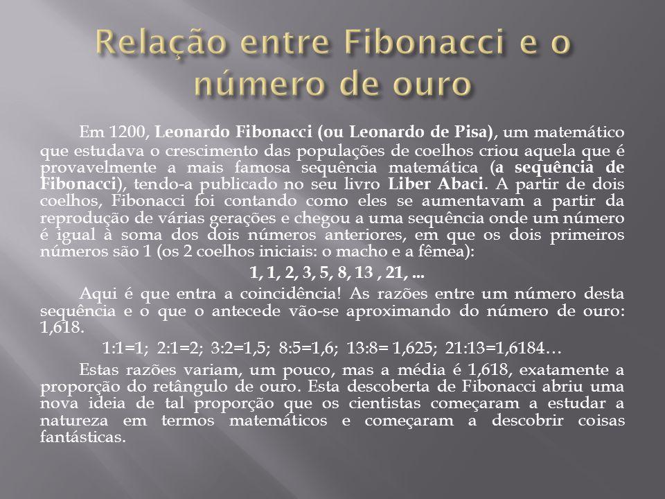 Relação entre Fibonacci e o número de ouro