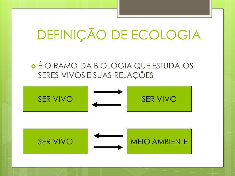 DEFINIÇÃO DE ECOLOGIA É O RAMO DA BIOLOGIA QUE ESTUDA OS SERES VIVOS E SUAS RELAÇÕES. SER VIVO. SER VIVO.