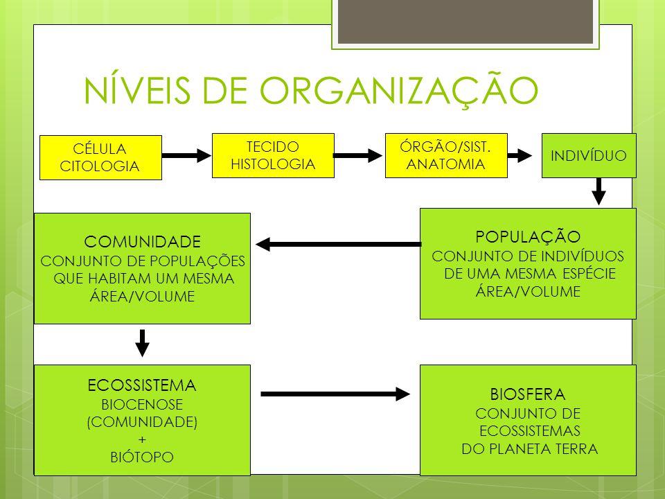 NÍVEIS DE ORGANIZAÇÃO POPULAÇÃO COMUNIDADE ECOSSISTEMA BIOSFERA CÉLULA