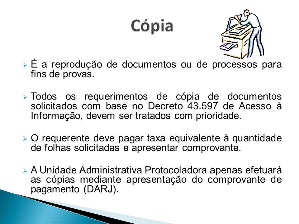 Cópia É a reprodução de documentos ou de processos para fins de provas.