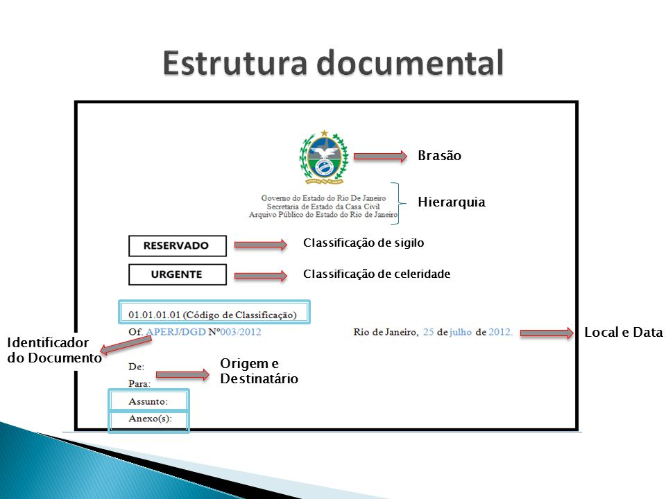 Estrutura documental Brasão Hierarquia Local e Data