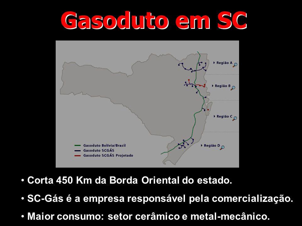 Gasoduto em SC Corta 450 Km da Borda Oriental do estado.